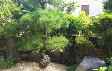 170405_garden1